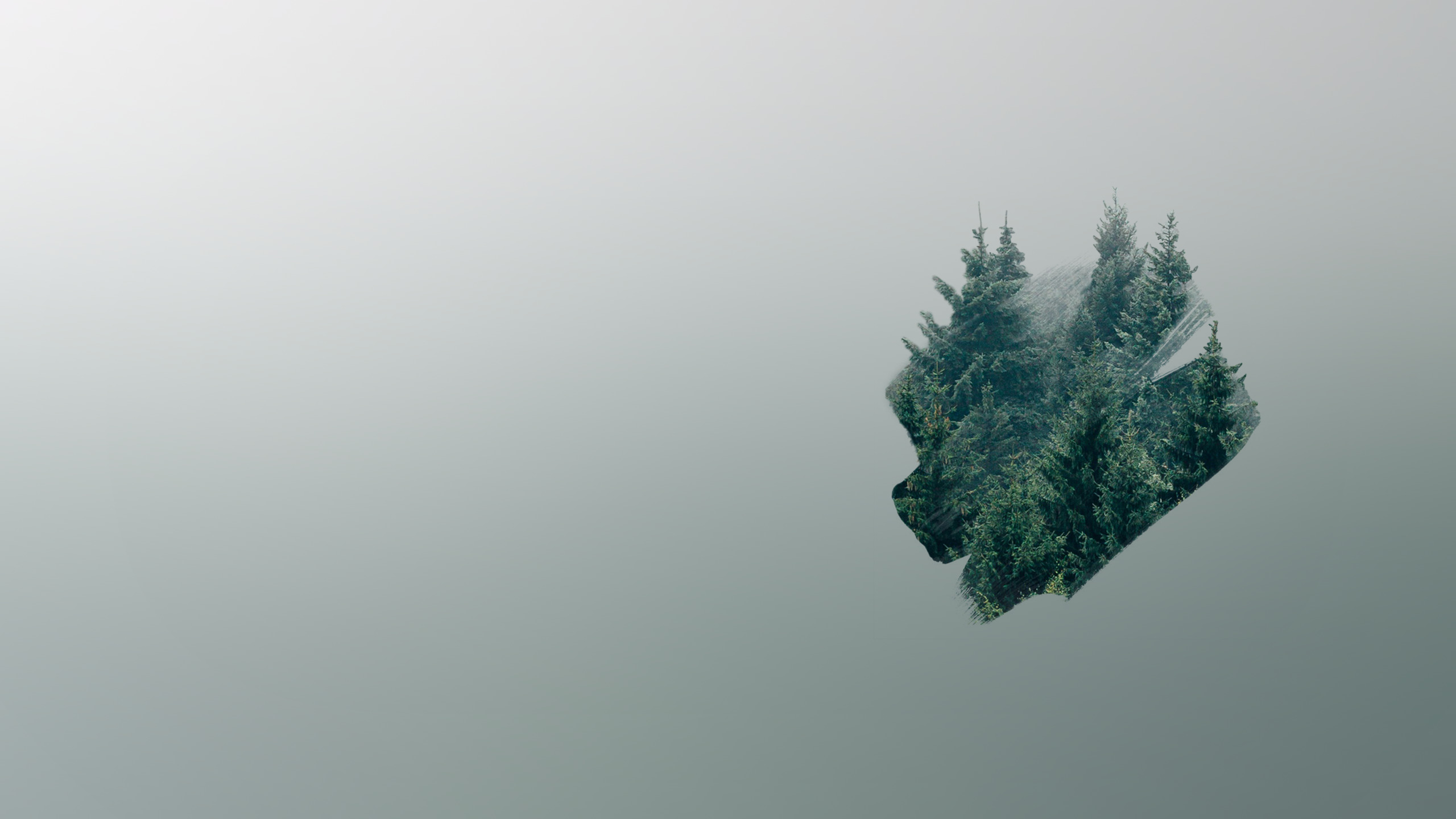 minimalist forest [2560x1440] : wallpapers